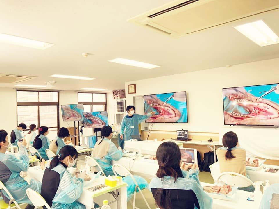 インプラント&歯周病セミナー開催しました。