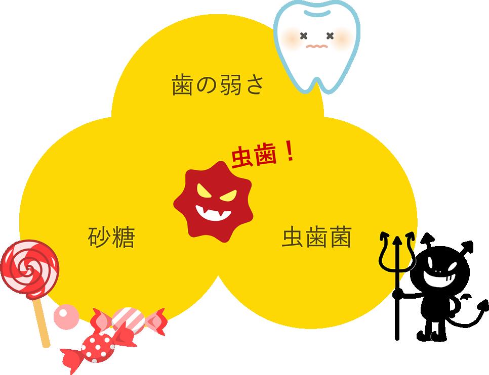 箕面市の寺嶋歯科医院の小児歯科「きらきらクラブプログラム」